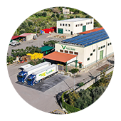 Lavorazione e commercializzazione di agrumi