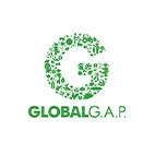 Cert_Global